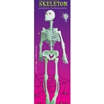 Clownhose gestreift Kostüm