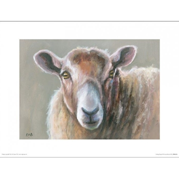 Looking Sheepish Kunstdruck Louise Brown