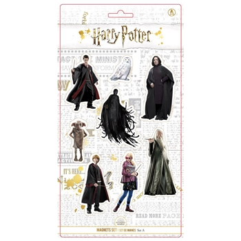 Harry Potter Magnetset mit 8 Figuren