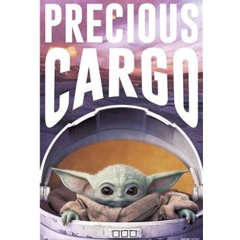 Star Wars The Mandalorian - Precious Cargo Poster